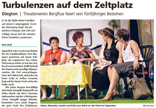 Pressebericht_VS_2011